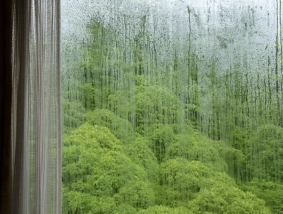 Picture of a fogged window.